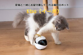 【全米で大ヒット!】EBO|猫おもちゃ 猫用スマートロボットEbo(イーボ)ペットモニター カメラ— 猫ボール 電動 猫じゃらし 可愛い猫のお友達 猫の遊び相手になってくれる 留守番中の猫ちゃんの不安・運動不足を解消【送料無料】