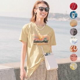 チュニックプリントTシャツ ◆ S M L LL 3L ◆ ◇ ベルメゾン レディース カットソー トップス Tシャツ 夏 半袖 綿100% おしゃれ かわいい ◇