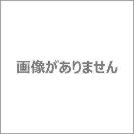 【BELLE MAISON】ベルメゾン 綿100%フレアな形のチュニックTシャツ 「パリのスケッチ(グレイッシュブルー)」 ◆S M L LL 3L◆ ◇mini labo◇