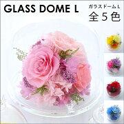 【送料無料】ガラスドーム〈L〉【母の日】