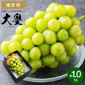 大皇(おおすめら) シャインマスカット 約1.0kg (お届け:9月下旬以降)送料無料 (のし・包装・メッセージカード利用不可) / 兵庫県産 葡萄 ブドウ ぶどう 高級 フルーツ ギフト 期間限定