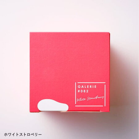 バレンタインチョコ2019ギフトGALERIE#082チョコレート(ギャルリハッシュゼロハチニ)(ホワイトストロベリー/ブラウンバナナ)(のし・包装・メッセージカード利用不可)/C-19