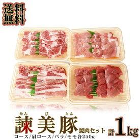 送料無料 長崎ブランド豚 諫美豚 かんびとん 食べ比べ セット 1kg (冷凍) 便利な小分けセット かんびとん (焼肉用) お取り寄せグルメ