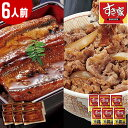 すき家 牛丼の具 国産 うなぎ 蒲焼 セット 6人前 食品 冷凍食品 おかず 【7560円以上で送料無料】