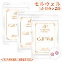 身体の巡りの力を取り戻す!Cell Well セル ウェル<MAMORU-MEGURI>(60粒)×3袋/ 伝承ハーブで身体の巡り力を取り戻す!美容 健康 …