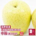 長野県の柳沢さん栽培完熟王林リンゴ