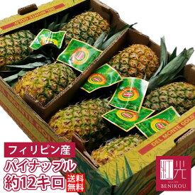 パイナップル パイン フィリピン産 約12kg(6〜9本) 葉付き 「北海道・沖縄は+1100円」 果物 フルーツ