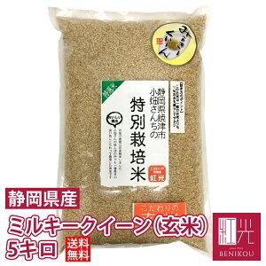 ミルキークイーン 【送料無料】小畑さんのミルキークイーン玄米 5kg「北海道・沖縄は+1100円」