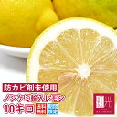 ノンケミレモン 【送料無料】 ノンケミカル輸入レモン 10.0kg (サイズに大小あり) (約65−90個入り) 「北海道・沖縄は+1100円」 レモン 柑橘 果物 フルーツ