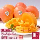 【予約】オーストラリア産 マンゴー 小箱 約2-3玉入 (重さ 約0.7...