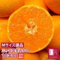 完熟三ケ日みかん優(M)10キロ箱(早生)