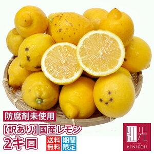 訳あり 国産 レモン 2kg 鈴木さんらの国産レモン B品 「北海道・沖縄への配送は+1100円」