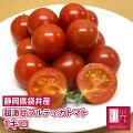 紅光の完熟フルティカトマト(小箱・1キロ)