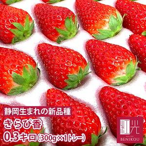 【送料無料】 静岡産 きらぴ香 いちご 0.3kg (20〜30粒) 300g×1トレー 【#元気いただきますプロジェクト】 苺 フルーツ