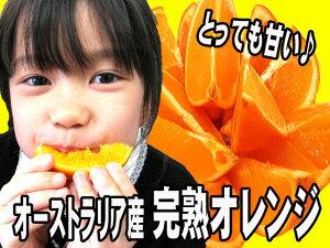 カリフォルニア産オレンジ