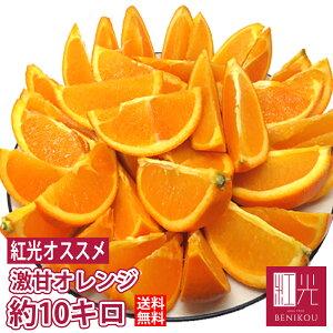 激甘 オレンジ 約10kg(48〜66玉) 輸入品 【送料無料】 「北海道・沖縄は+1100円」 果物 フルーツ ネーブル バレンシア 柑橘 ジュース