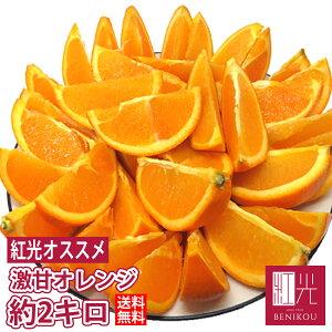 激甘 オレンジ 約2kg(9〜14玉)輸入品 【送料無料】 「北海道・沖縄は+1100円」 果物 フルーツ ネーブル バレンシア 柑橘 ジュース