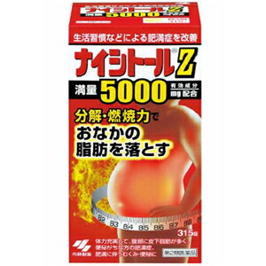 【第2類医薬品】 ナイシトールZ 315錠