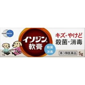 【第3類医薬品】 イソジン 軟膏 5g