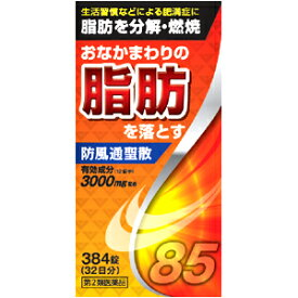 【第2類医薬品】 北日本製薬 防風通聖散料エキス錠 384錠 □ あす楽対応