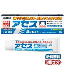 【第3類医薬品】 アセス 160g×6個セット あす楽対応