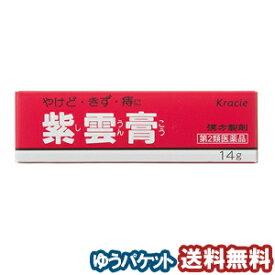 【第2類医薬品】 クラシエ 紫雲膏(シウンコウ) 14g メール便送料無料