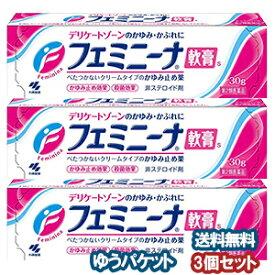 【第2類医薬品】 小林製薬 フェミニーナ軟膏S 30g×3個セット メール便送料無料