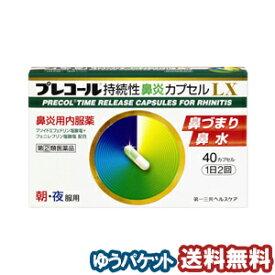 【第(2)類医薬品】 プレコール持続性鼻炎カプセルLX 40カプセル メール便送料無料