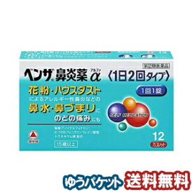 【第(2)類医薬品】 ベンザ鼻炎薬α(1日2回タイプ) 12錠 メール便送料無料