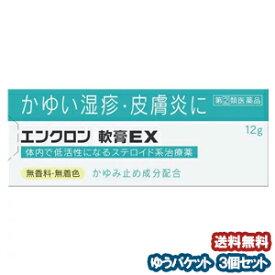 【第2類医薬品】 エンクロン 軟膏 EX 12g×3個セット ※セルフメディケーション税制対象商品 メール便送料無料