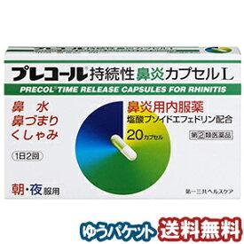 【第(2)類医薬品】 プレコール持続性鼻炎カプセルL 20カプセル メール便送料無料