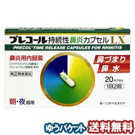【第(2)類医薬品】 プレコール持続性鼻炎カプセルLX 20カプセル メール便送料無料