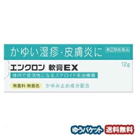 【第2類医薬品】 エンクロン 軟膏EX 12g ※セルフメディケーション税制対象商品 メール便送料無料