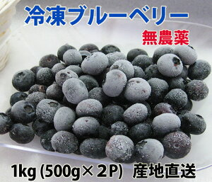国産、無農薬の冷凍ブルーベリー1kg(500g×2) 農薬・除草剤不使用、洗い済み