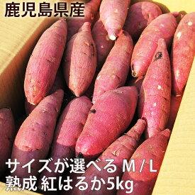 鹿児島のさつまいも「べにはるか」5kg サイズが選べる M・L 熟成 紅はるか