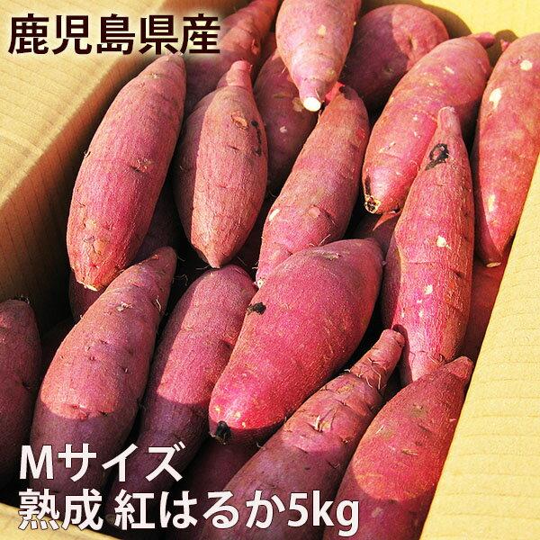 鹿児島のさつまいも「紅はるか」5kg Mサイズ 熟成 べにはるか