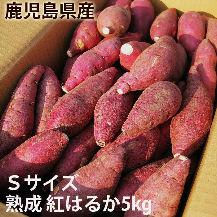 鹿児島のさつまいも「べにはるか」5kg Sサイズ 熟成 紅はるか