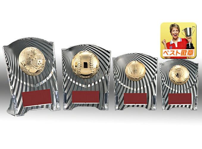 盾 文字彫刻無料 種目選択(樹脂製)W-CAL5569-Dサイズ 高さ125mm 盾 記念品 バスケ 野球 サッカー 優勝盾 表彰 記念 バレーボール 名入れ 記念盾 表彰 優勝