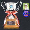 ゴルフ優勝カップ【送料&文字無料】カップ人気!優勝カップA●高さ290mm