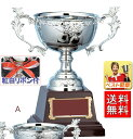優勝カップ 文字彫刻無料 銀(シルバー)の金属製カップW-FA146-A 高さ225mm