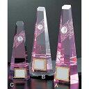 トロフィー【文字無料】ガラスNEW!クリスタル トロフィーM-VT3114-Aサイズ●高さ250mm(トロフィー/ガラス/クリスタル/ピンク)
