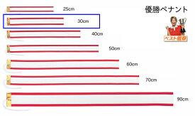 優勝ペナント(無地)●サイズ300mm(30cm)トロフィー・優勝カップ用