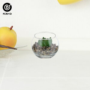 フェイク テラリウムグリーン グラス丸S 3 | 観葉植物 壁掛け 壁かけ フェイク ミニ 人工観葉植物 造花 多肉植物 小さい インテリアグリーン おしゃれ プレゼント ギフト コンパクト セット