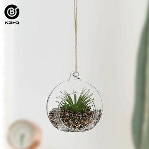 フェイク テラリウムグリーン ハンギング丸M 2 | 観葉植物 壁掛け 壁かけ フェイク ミニ 人工観葉植物 造花 多肉植物 ガラス ガラス鉢 小さい インテリアグリーン おしゃれ プレゼント ギフト