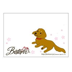【ネコポス対応可 】メッセージカード ミニチュアダックス フラワー ポストカード お祝い 結婚式 犬 かわいい プレゼント メッセージカード [M便 1/20]【ラッピング無料対応可】