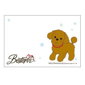【ネコポス対応可 】メッセージカード トイプードル リトルスター結婚式 お祝い 誕生日 ポストカード オリジナル メッセージ かわいい 犬 [M便 1/20]【ラッピング無料対応可】