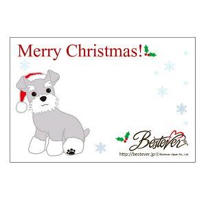 【印字サービス】インクジェット印刷 メッセージカード ギフトカード ベストエバー ギフト プレゼント お礼 お返し | クリスマス Xmas シュナウザー