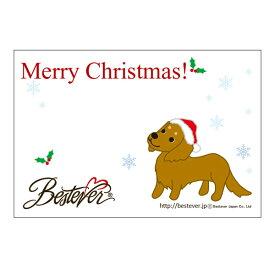【ネコポス対応可 】メッセージカード ミニチュアダックス クリスマス [M便 1/20]【ラッピング無料対応可】