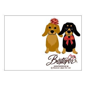 【印字サービス】インクジェット印刷 メッセージカード ギフトカード ベストエバー ギフト プレゼント お礼 お返し   クリスマス Xmas ダックス B