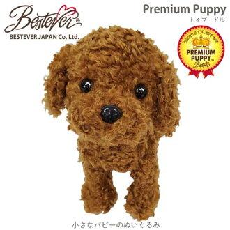 高级纸玩具贵宾犬红 (5 / 重新股票) 最佳 eBay 日本
